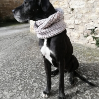 Marshmallow Snood (PATRÓN GRATIS)